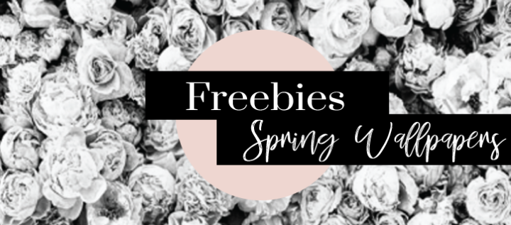FREEBIES || 5 Wallpapers to make you bloom this spring